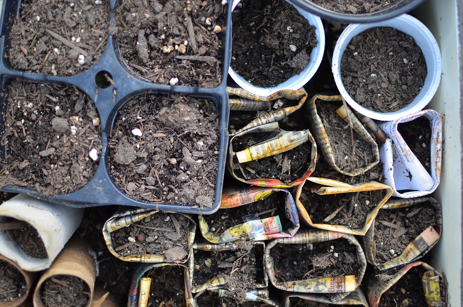 DIY Toilet Paper and Compost Seedling Pots at A Nest for All Seasons