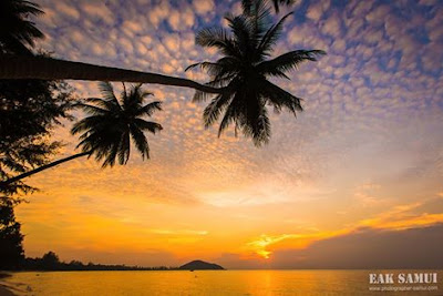 Koh Samui, Thailand daily weather update; 4th February, 2017