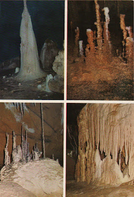 Postal de la Cueva de Tito Bustillo