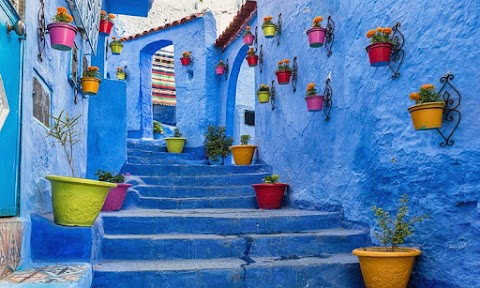 Amazing Fez to Chefchaouen Day Trip
