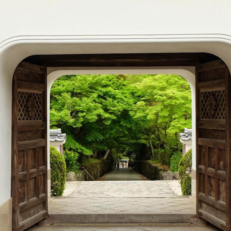 懷念起第一次去京都新鮮的味道