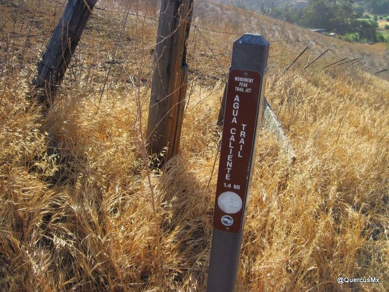 Agua Caliente Trail, cerca de Ed Levy County Park
