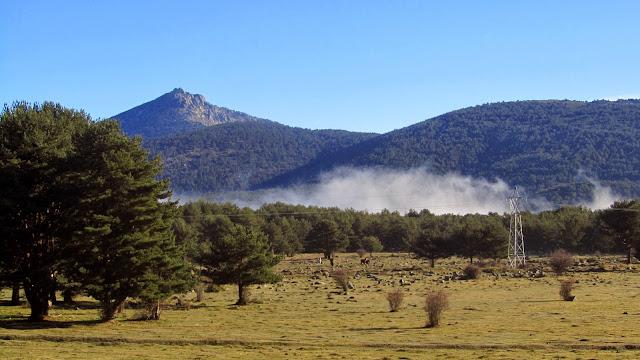 La Niebla en San Rafael