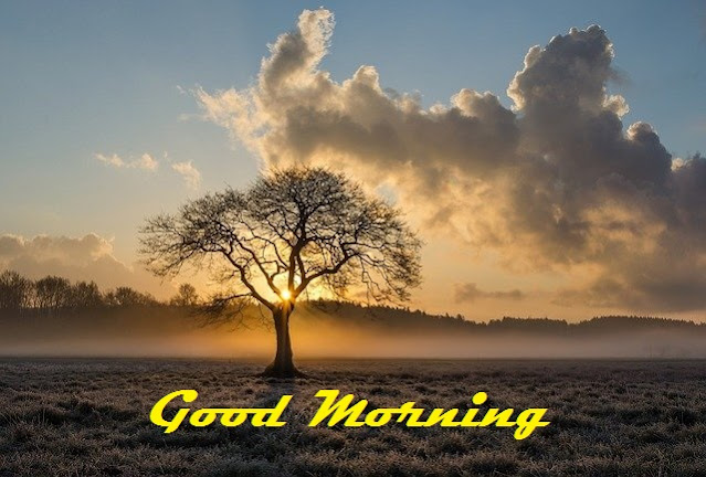 good morning scenery images
