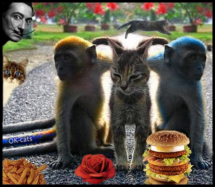 Photoshopped Cat picture Surrealism • Salvador Dali Cat with a rose, 2 monkeys, french fries and a giant cheeseburger