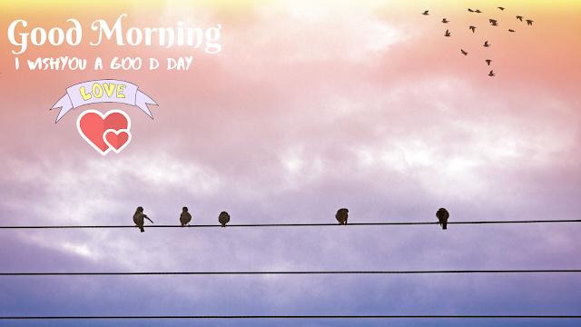 Good Morning image with bird