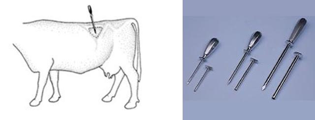 Chọc troca phải vệ sinh, sát trùng vùng da và tiêm kháng sinh để chống nhiễm trùng.
