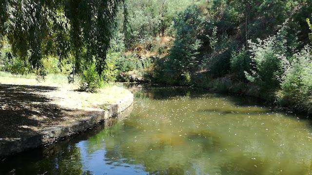 zona fluvial