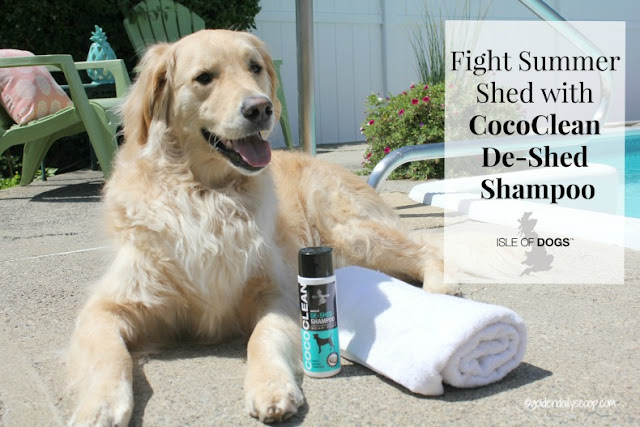 grooming products for golden retriever dogs to help shedding