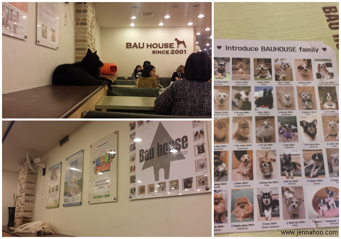 jennahoo.com Hapjeong parissa tunnissa - Bau House-koirakahvila ja YG Entertainment