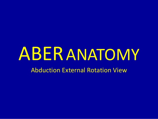 Mri Musculo Skeletal Section Mri Anatomy Of The Shoulder Aber View