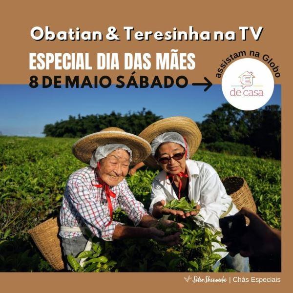 No Dia Nacional do Turismo, 08/05, Dona Ume e Teresinha do Sítio Shimada terão participação em programa da emissora TV Globo