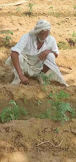 किसान नवप्रवर्तन के लिए उत्सुक