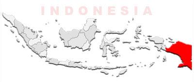 image: Papua Map location