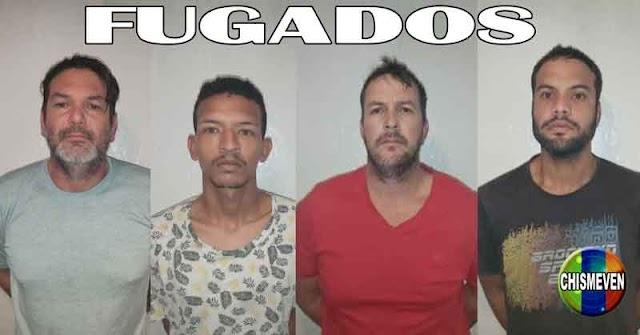 Se fugaron 4 presos de los calabozos de la GNB en La Guaira