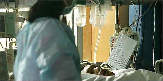 Pelo menos 18 pessoas, na maioria de Guangdong, em 2007 morreram num mês ingerindo remédios contaminados. Fonte New York Times
