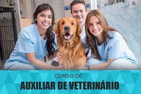 AUXILIAR DE VETERINÁRIO E PETSHOP