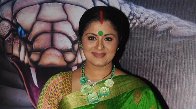 autobiography of sudha chandran