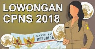 Syarat dan Ketentuan Yang Perlu di Persiapkan Untuk Mendaftar CPNS 2018 Infokanlah.com
