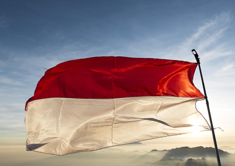 monaco drapeau rouge blanc