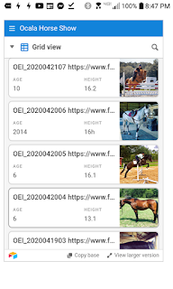 List your horse at Ocala Horse Sales
