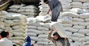 Uncontrolled price of flour in Swat, tremendous for the people