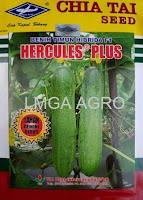 timun hercules plus,timun f1 hercules plus,benih timun f1 hercules plus,cap kapal terbang