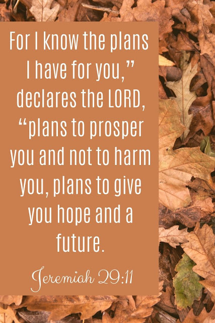 Bible Verse | For I Know The Plans I Have For You Declares The Lord