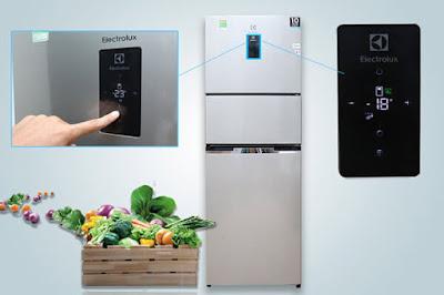 10 Điểm Bảo Hành Tủ Lạnh Electrolux Tại Bắc Giang