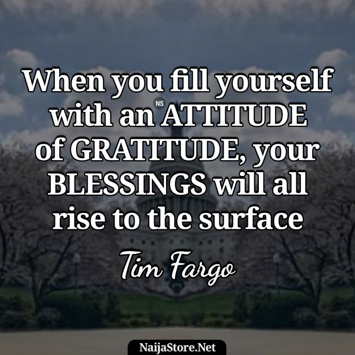 Tim Fargo's Quote: When you fill yourself with an attitude of gratitude, your blessings will all rise to the surface - Motivational Quotes