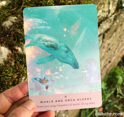 A Wordless Song - Starseed Oracle Whale and Oraca Elders