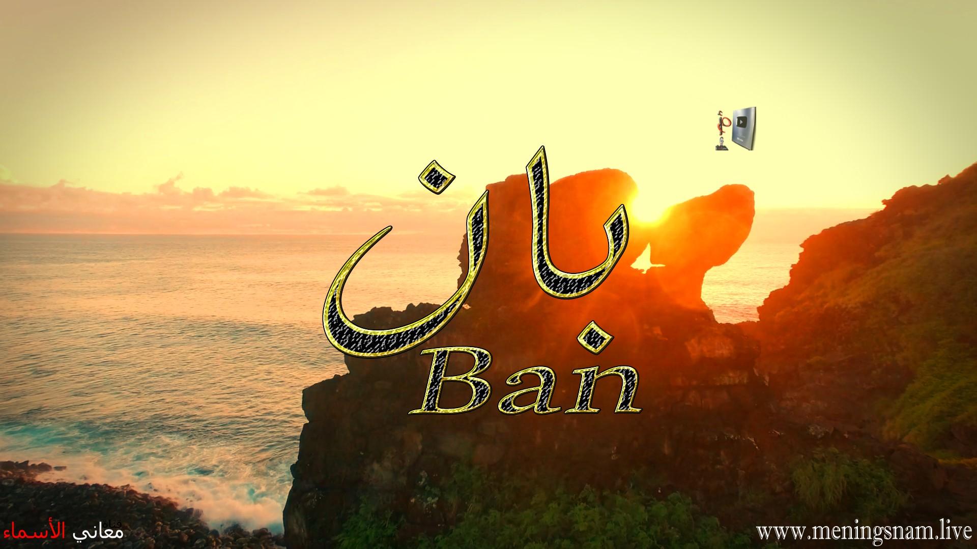 معنى اسم بان وصفات حامل هذا الاسم Ban
