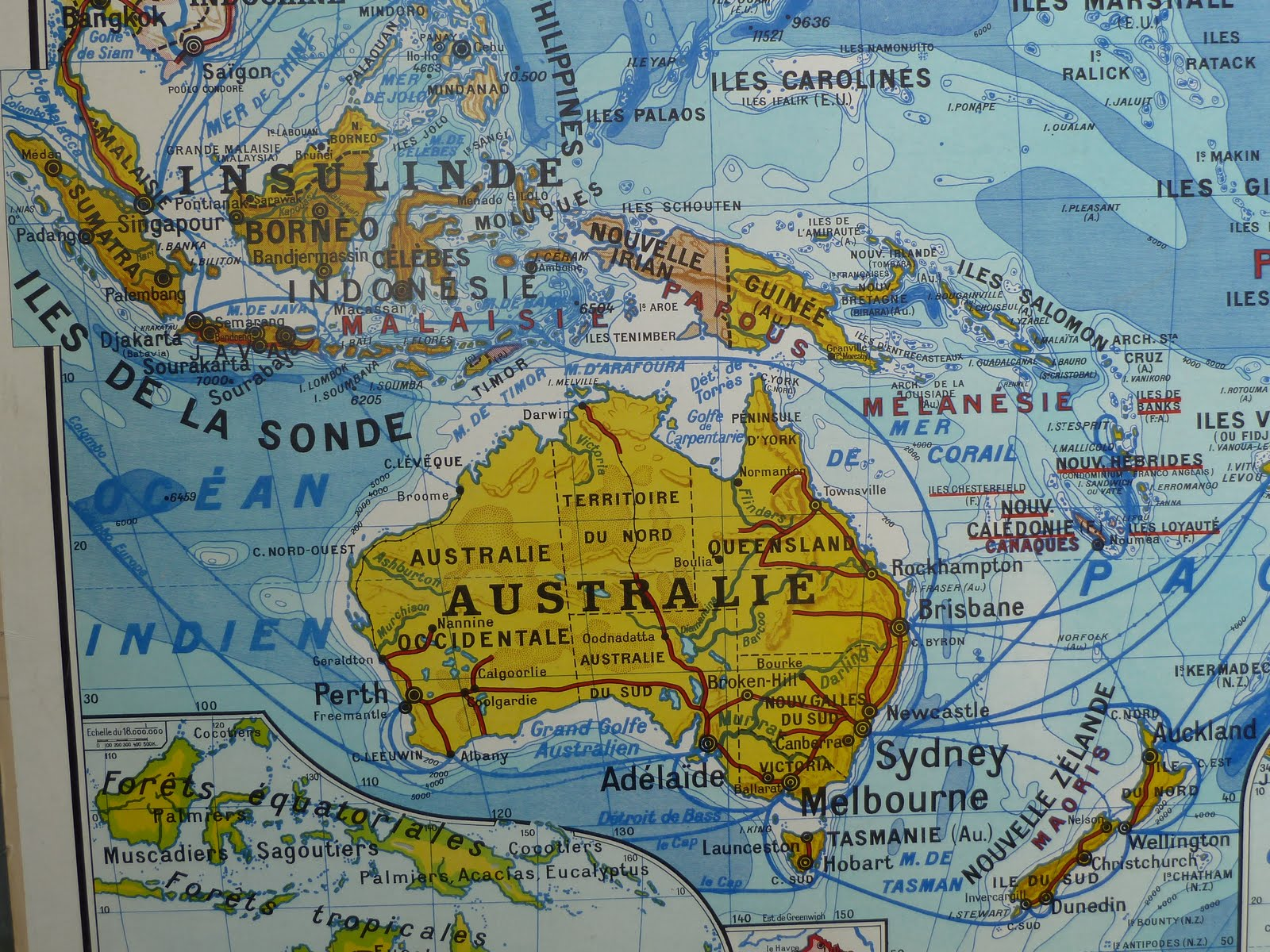 Map Of Australia Japan.Vintage French Posters Botany Animals Anatomy Old World Maps From