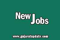 Gujarat Biotechnology University (GBU) Recruitment for Various Posts 2021