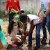 Prefeitura de Serrinha celebra Dia da Árvore com plantio de mudas de árvores nativas e frutíferas