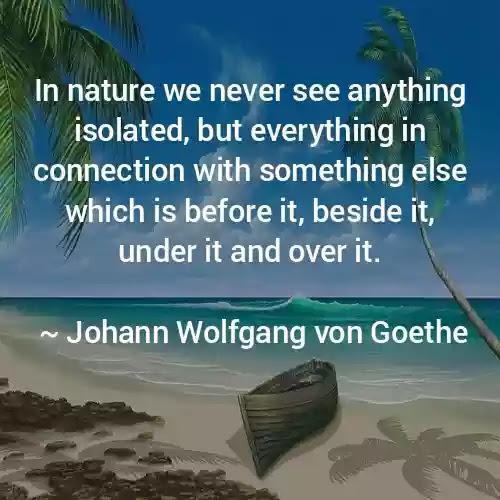 Johann Wolfgang von Goethe nature Quotes