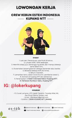Lowongan Kerja Esteh Indonesia Sebagai Crew