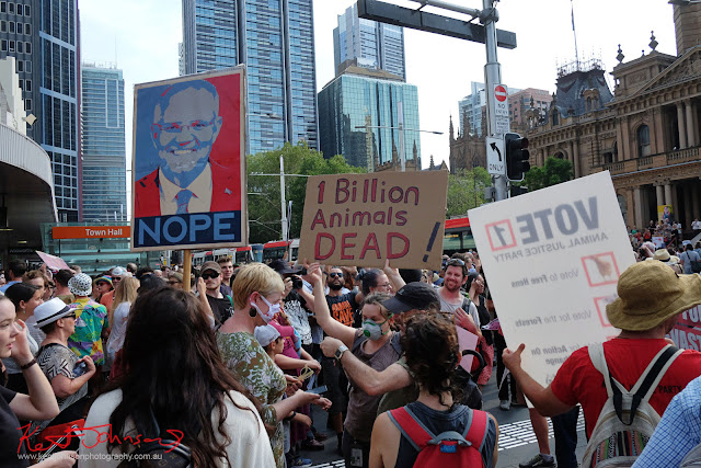Sydney Climate Rally - 'NOPE' Placard, George Street
