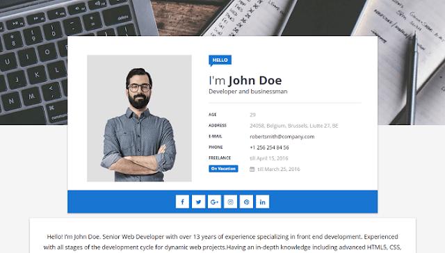 Blogger CV Teması