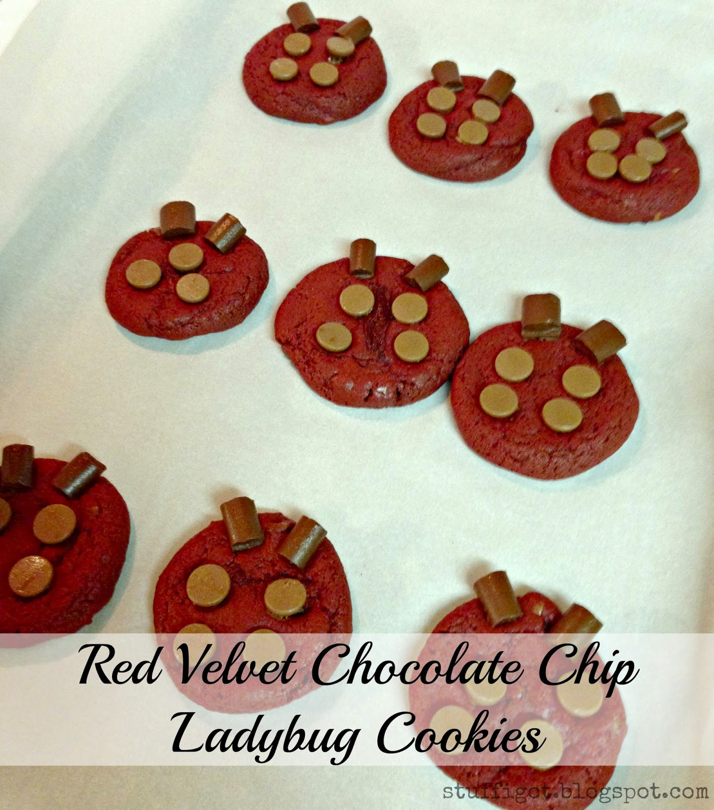 Crafty And Wanderfull Life: Red Velvet Chocolate Chip Ladybug Cookies