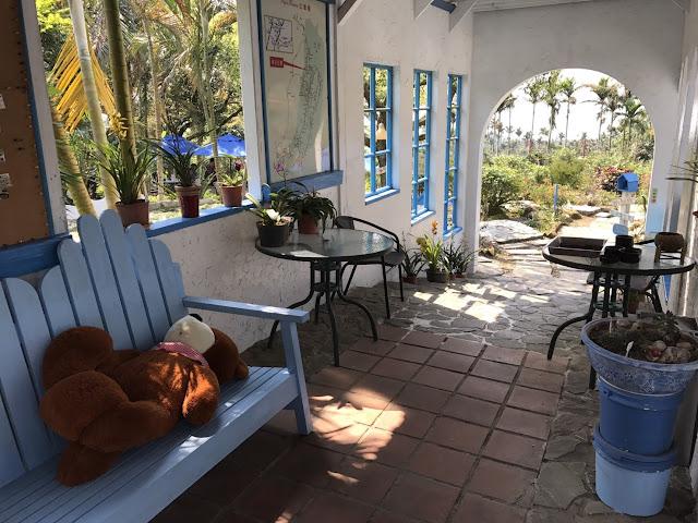 雲林古坑美食喝咖啡看夜景 56號藍色公路咖啡