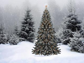 Božićne slike čestitke besplatne pozadine za desktop free download