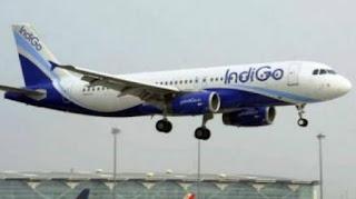 INDIGO Airlines Delhi Job