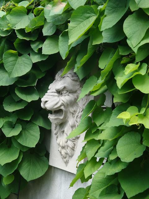 kamienna ozdoba w ogrodzie, pnącza