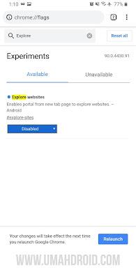 Google Chrome Flags Explore Website