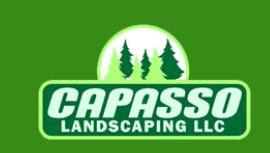 http://capassolandscaping.com/