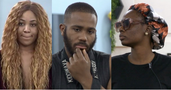 BBNaija 2020: Tolanibaj threatens Kiddwaya over Erica – 'I'll fight you and go home'   PEAKVIBEZ