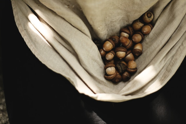 Acorns being held in a sack