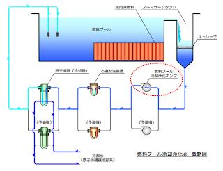 使用済燃料プール冷却浄化系概略図