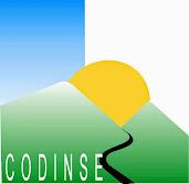 CODINSE